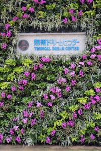 okinawa987-218