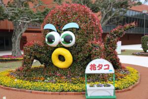 okinawa987-491