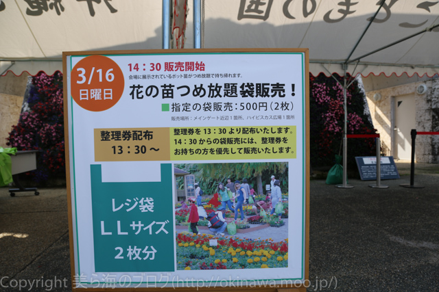 okinawa-_1012140316