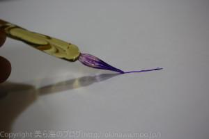 okinawa-_7140308