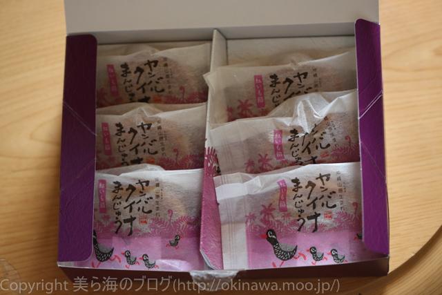 okinawa-_10140331