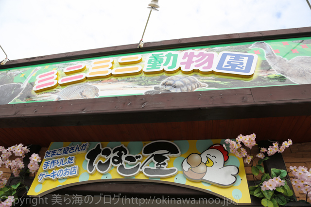 okinawa-_127140420