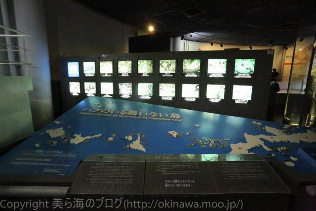 okinawa-_134140504
