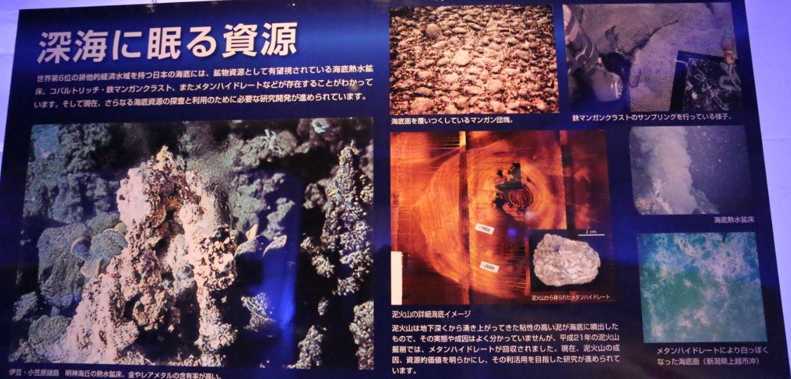 海底に眠る資源